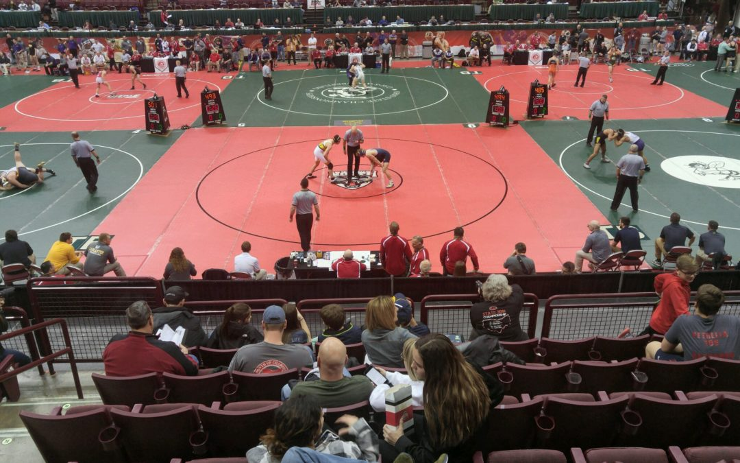 Quinn Kelley Competes at State Wrestling Championship