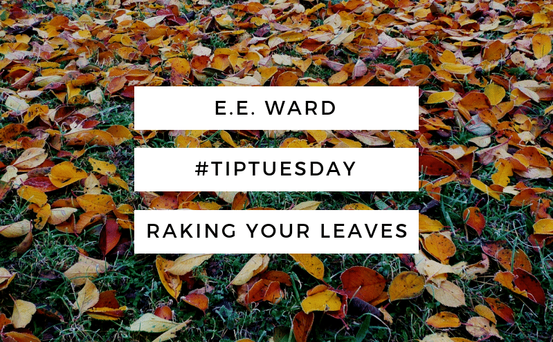 #TipTuesday-Raking Your Leaves