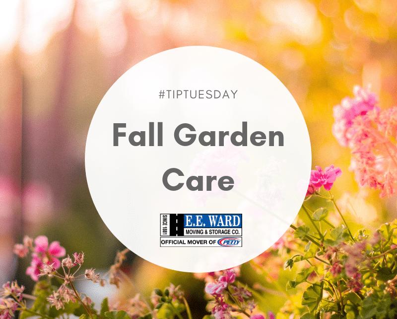 #Tip Tuesday- Fall Garden Care